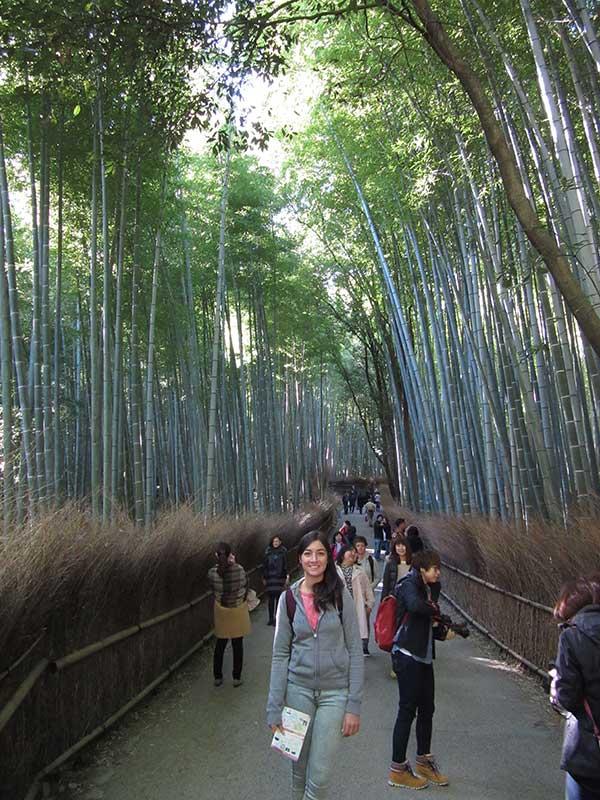 BambooForest1