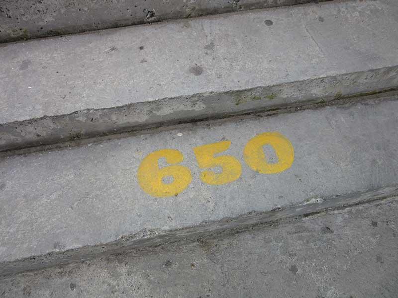 650Steps