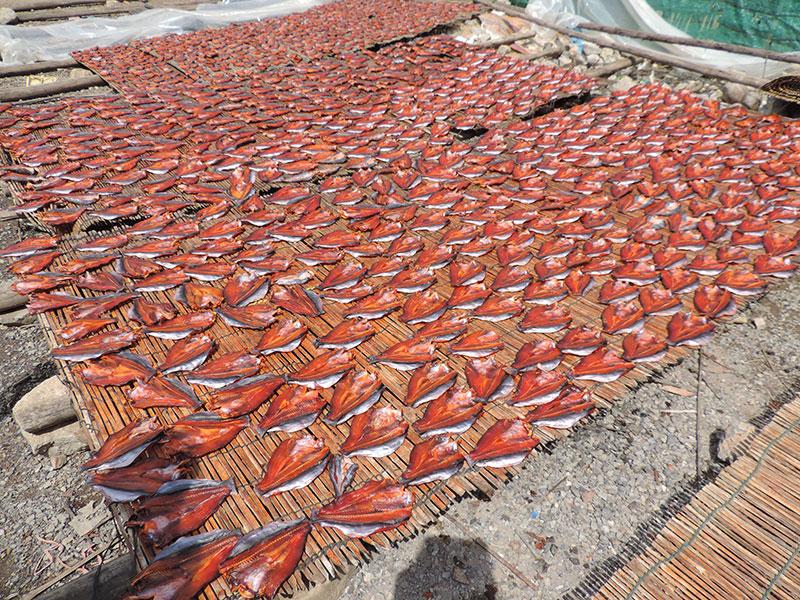 DryingFish